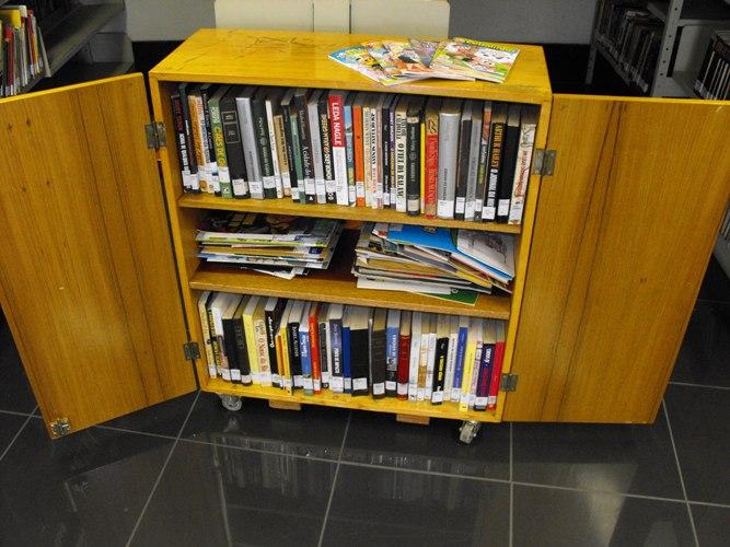 Caixa-Estante: pequeno móvel com prateleiras internas para disposição dos livros (Foto: Divulgação)
