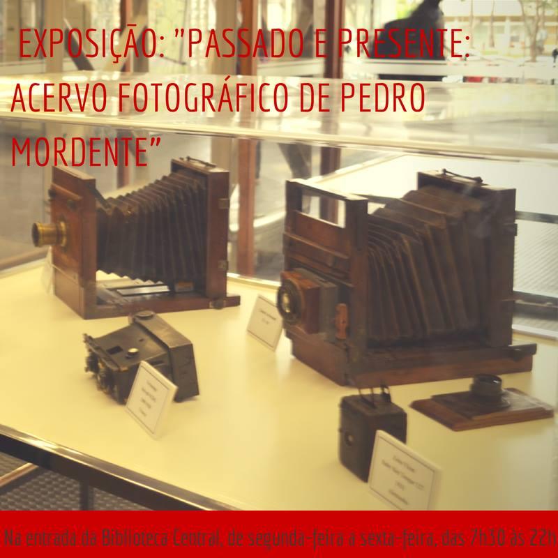 Passado e Presente Acervo Fotográfico Pedro Mordente