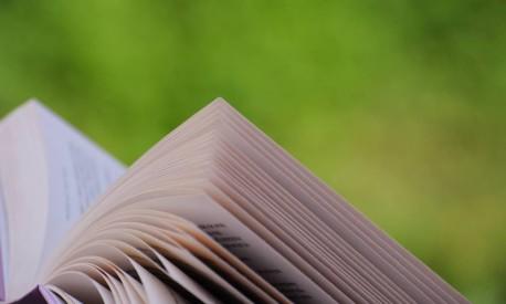 Jovens preferem livros impressos, diz pesquisa (Foto: Freeimages)