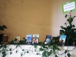 Exposições temáticas são realizadas na biblioteca pública de Formiga (Foto: Prefeitura de Formiga)