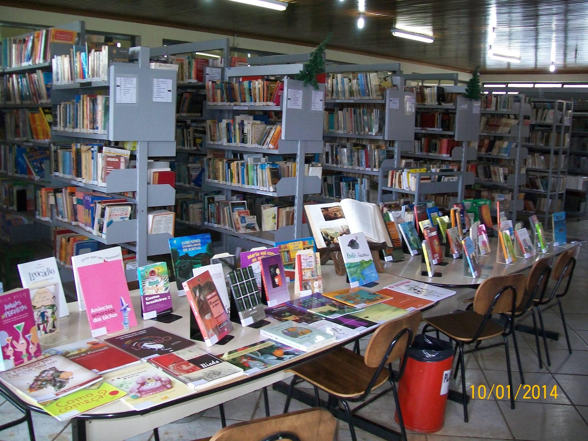 Parte do acervo da biblioteca (Foto: Divulgação)