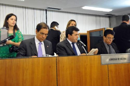Aprovação de pedido de diligências à Secretaria de Cultura provocou polêmica na reunião (Foto: Pollyanna Maliniak)