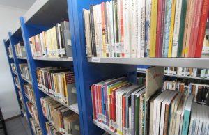 Biblioteca Madeira de Freitas será o local da festança (Foto: Divulgação/PMC)